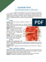 Cavidade Oral no p1