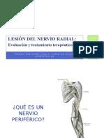 Lesión Del Nervio Radial m