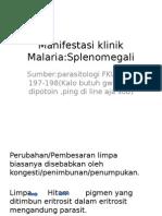 Manifestasi Klinik Malaria