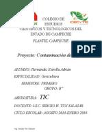 Proyecto de TIC