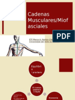 Cadenasmusculares 150411110848 Conversion Gate01