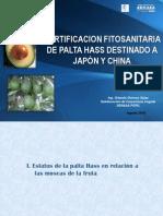 Certificaciprotocolo de exportacion de palta para Chinaon Fitosanitaria Japon y China