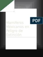 Mamíferos Mexicanos en Peligro de Extinción
