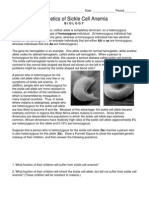 Worksheet Genetics of Sickle Cell Anemia