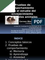 Pruebas de comportamiento para el estudio del envejecimiento en modelos animales