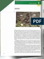 Economia da Natureza - Ricklefs - 6¦ed - Cap. 6