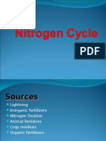 Nitrogen Cycle02