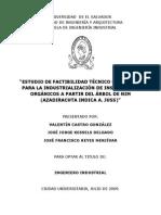 Estudio de Factibilidad Tecnico Economic Para La Industrializacion de Plagicida Organcos