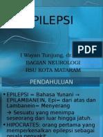 Epilepsi-unizar Smtr 4