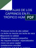 1 Clase Ventajas Caprinos 2008.