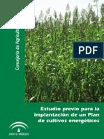 Estudio Previo para la implantación de cultivos energéticos