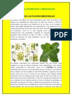Importancia de Las Plantas Medicinales
