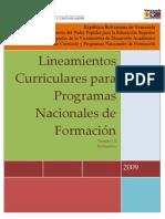 LINEAMIENTOS CURRICULARES