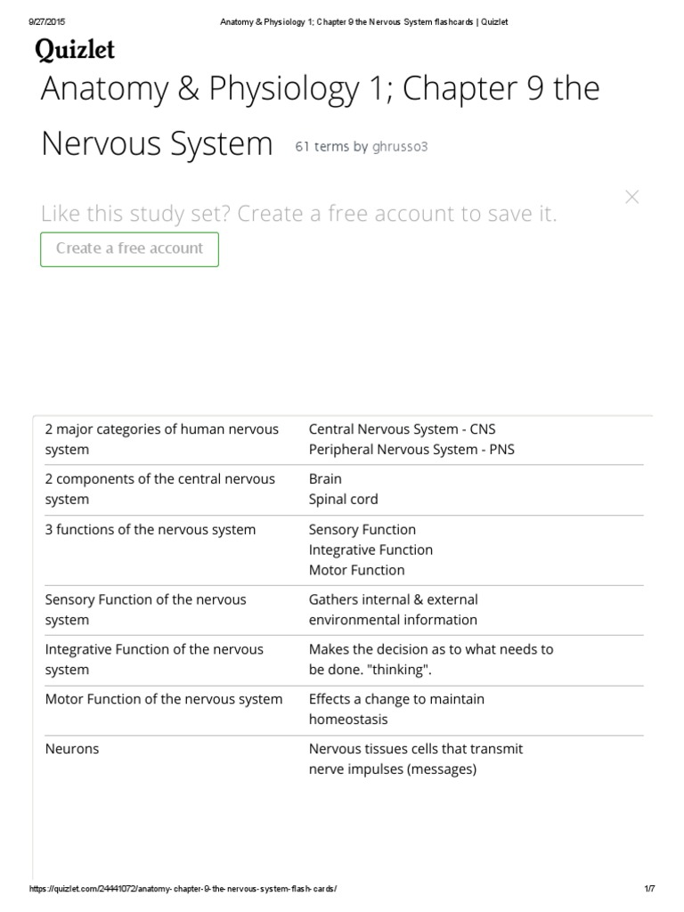 Anatomy & Physiology 1; Chapter 9 the Nervous System Flashcards _ ...