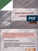 Boala-veziculoasa