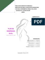 Plan de Enseñanza Embarazo