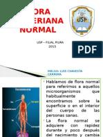 FLORA BACTERIANA NORMAL.pptx