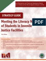 Meeting Literacy Needs