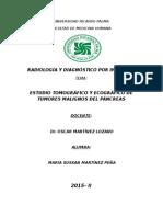 Monografia Pancreas