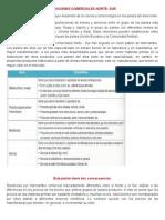 RELACIONES COMERCIALES NORTE.docx