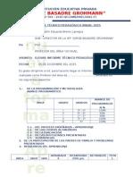 Informe Técnico Pedagógico Anual 2015