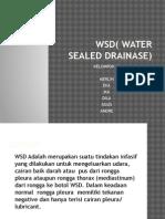 Presentation1 WSD.pptx