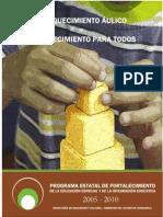 Enriquecimiento Aulico.pdf