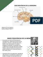 13._CLASE_BASES_BIOLOGICAS_DE_LA_MEMORIA.pdf
