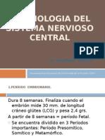 Embriologia SNC