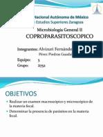 2752 examen coproparasitoscopico