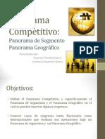 Panorama Competitivo Segmento y Geográfico