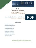 cuxtepeques reporte final.pdf