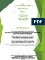 Pruebas Bioquímicas Básicas Del Nitrógeno
