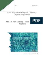 01 Atlas de Anatomía Vegetal. Tejidos