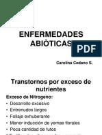 Enfermedades Abióticas (1).pdf