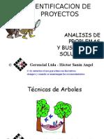 Arboles HSA