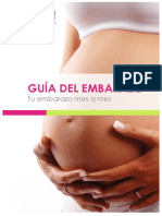 Guia Embarazo Clinica Millet