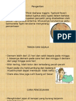ppt tipoid