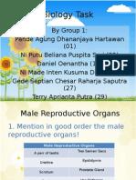 Biology Task