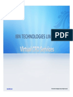 Virtual CFO Services | Outsourced CFO services | IBN