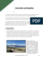 IV Bim - 1er. Año - Bio - Guía 7 - Áreas Naturales Protegid
