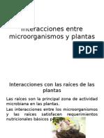 Interacciones Entre Microorgasnismos