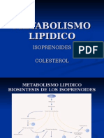 metabolismo-lcolesterol (1)
