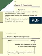 V - Função Organização.ppt