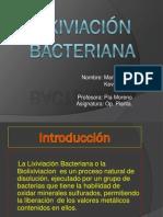 Lixiviación Bacteriana - Copia