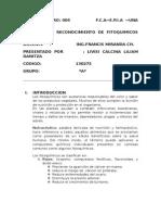 Informe Nº 04 de Fisiologia