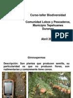 Biodiversidad en la comunidad Lobos y pescaderos Tepeh Durango