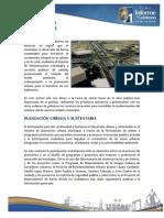Mexicali Desarrollo Sustentable
