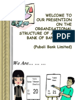 Pubali Bank - The Organizational Stracture