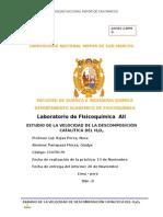 info 15 CATALISIS.docx